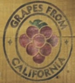 Table Grape Ads Feature Growers