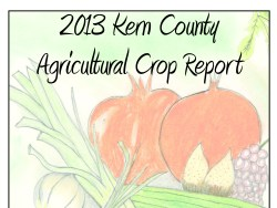 Kern County Ag Ranks Second in State, Fresno Drops to Third