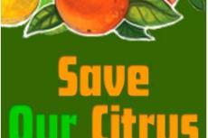 SaveOurCitrus Logo