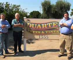 Duarte Nursery Loses Battle Against Army Corps Of Engineers
