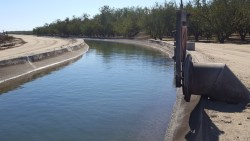 Halting the Sacramento Water Grab