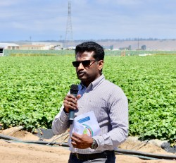 Bio-Control for Strawberry Growers