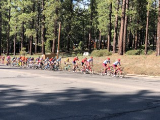 ATOC riders heading to the finish at the 2019 Tour of CA.