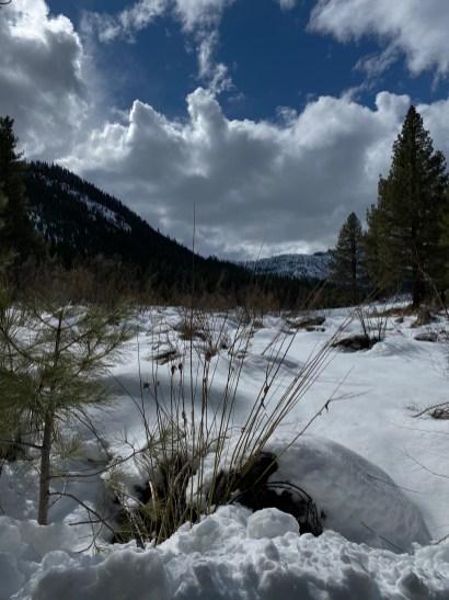 Grover Hot Springs moguls (snow on grass bumps).