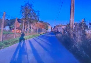 My view of the one of photographer's shadows from my seat on my bike, in my pain cave.