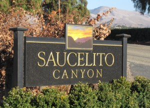 California Bottle of Wine Saucelito Vineyards