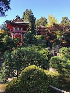 Japanese Tea Garden views