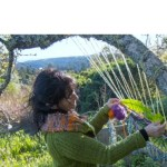 The Rollercoaster of Life brought her to California – InnerWeaving Coach Silvia Schroeder (Interview)