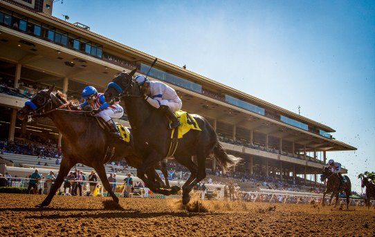 Del Mar's Fall Racing Festival Returns November 9 – December 2