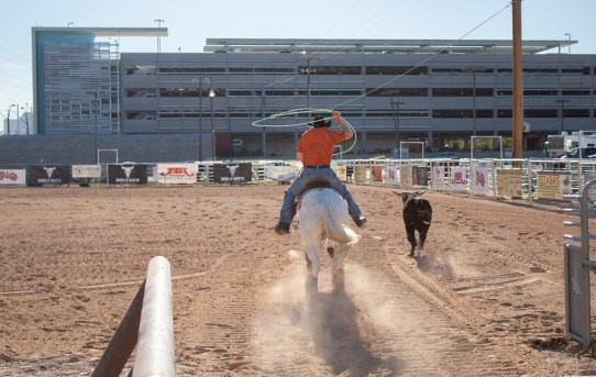 Plaza Hotel & Casino to Open Permanent Outdoor Equestrian Facility in Downtown Las Vegas