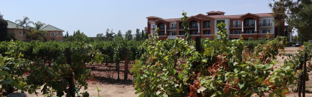 South Coast Winery Resort and Spa vineyards and scenery, visit Temecula Valley, Southern California's wine country