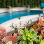 What To Look For In Pool Landscape Design California Pools