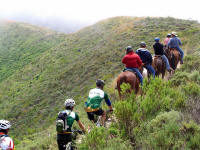 Riders, bikers and hikers sharing the trail.