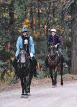 Audra Homicz on Chief and Pam Bowen on Wyatt 2011 Redneck 50