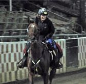Renie Burnett on Wild West 9 (Willie) Crossing the Finish Line at 2011 Tevis