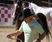 Robert Weldin and Airborne 2010 CSHA Endurance 1st High Pt. Heavyweight Buckle Winners At Tevis Vet Check 10/7/2011