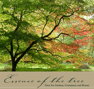 Essence Of The Tree logo