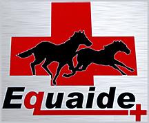Equaide Logo