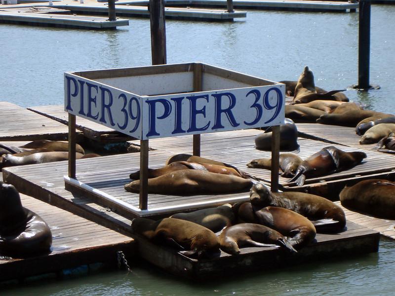 Pier 39 is a San Francisco Landmark