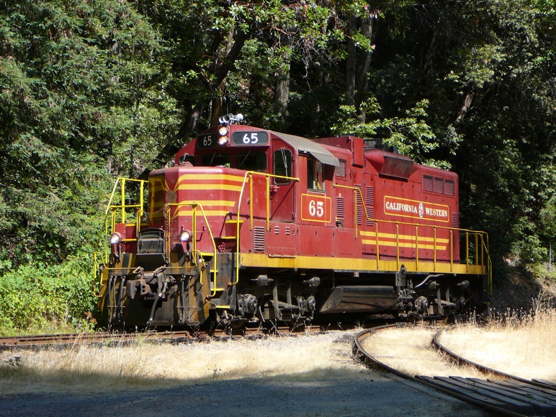 The Skunk Train is a California institution