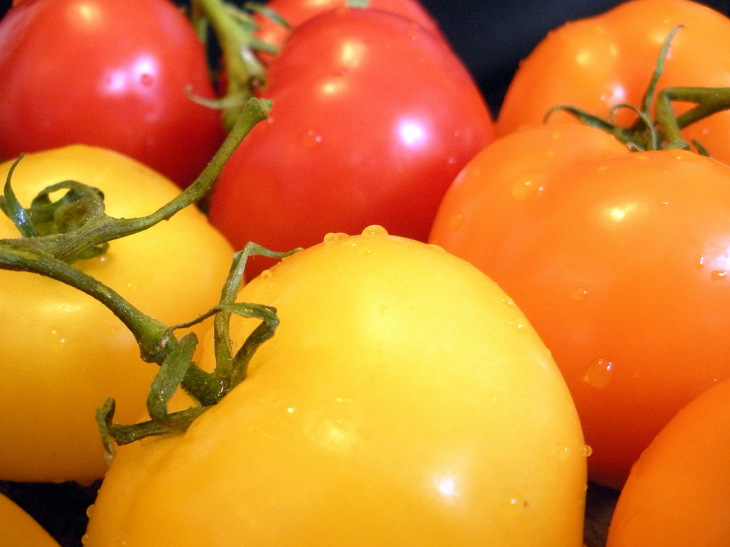 Check to see whether your tomato seedling is determinate or indeterminate.