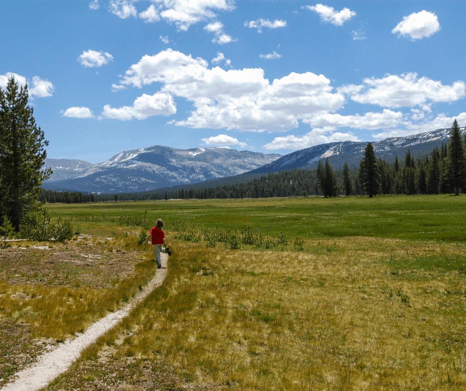 Tuolumne Meadow Trail