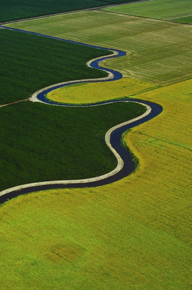 """An water bond measure on the November 2014 general election ballot includes $2.25 billion to fund Delta """"sustainability"""" projects, to improve both ecosystem health and water supply reliability. Photo: State Department of Water Resources"""
