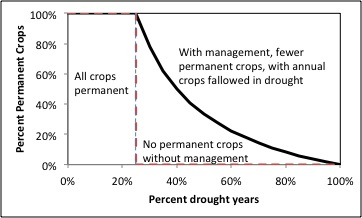 With more frequent droughts, permanent crops cannot be supported without management.