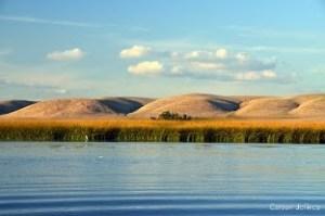 Suisun Marsh. Photo by Carson Jeffres, UC Davis