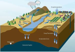 Shaping water storage in California | California WaterBlog
