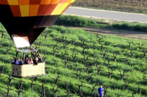 Lumiere Winery Balloon Ride