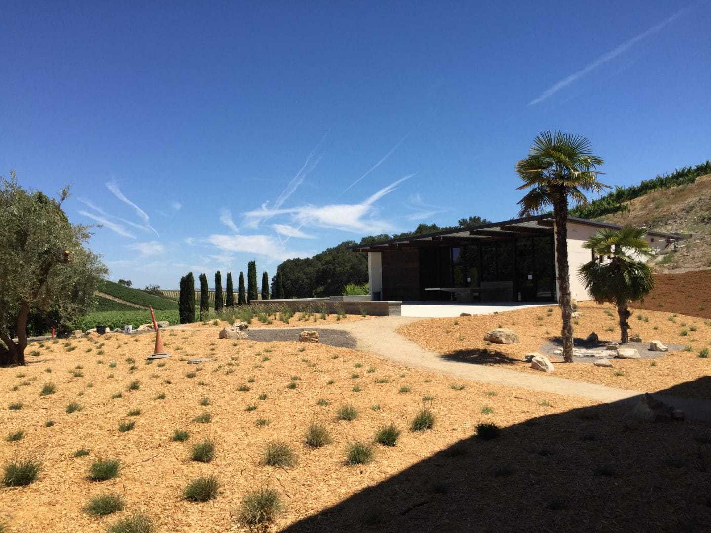view of paso robles vineyards aventure winery