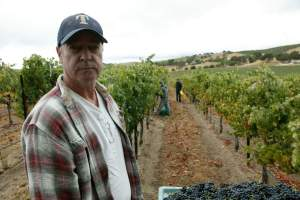 Doug Minnick Winemaker