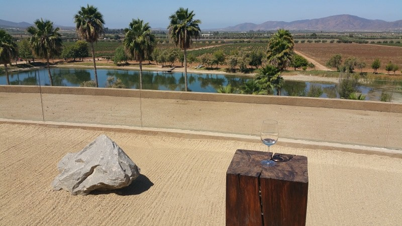baja california wineries