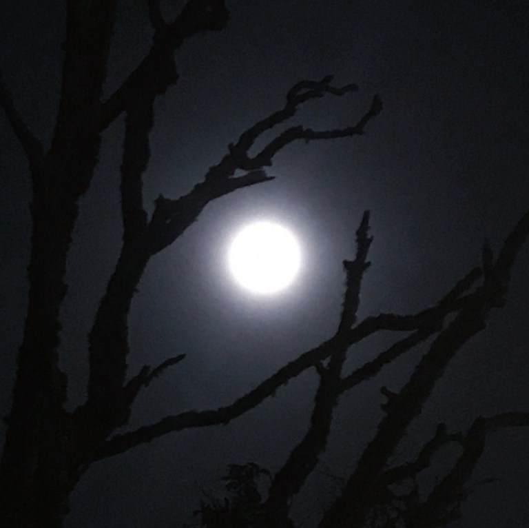 march 31 blue moon
