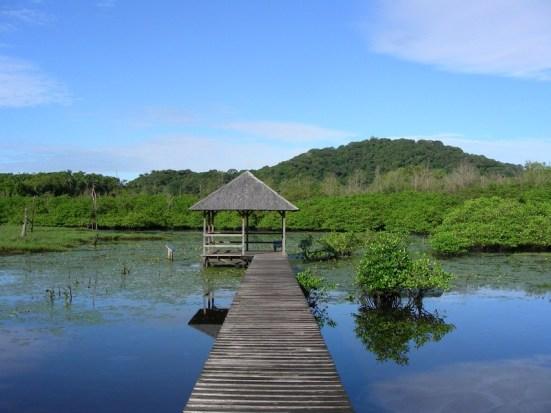 Salines Montjoly, en Guyane, département français situé en Amérique du Sud.