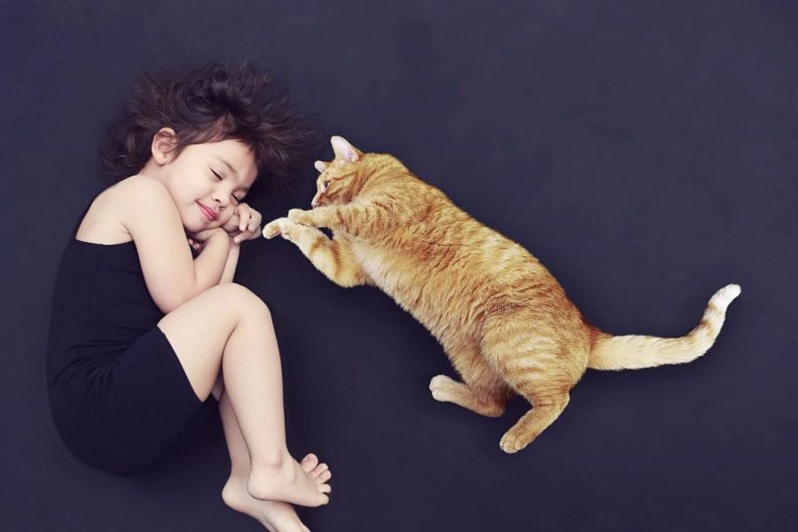 Petite fille dormant près d'un chat