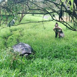 Me and a giant tortoise galapagos