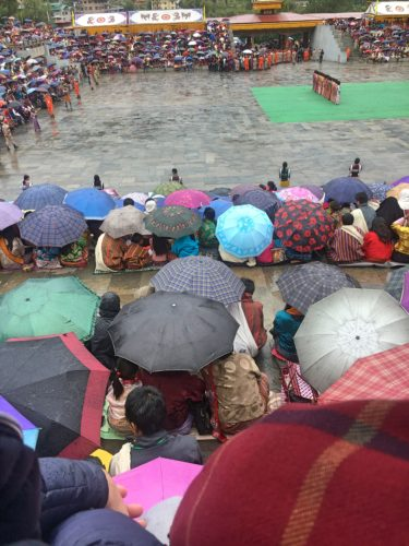 lots of umbrellas due to the rainy festival in Thimphu