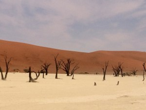 pic of deadvlei that cali took