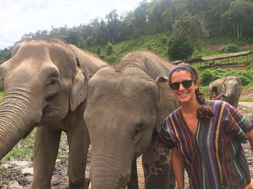 Elephants in Chiang Mai-one of the best destinations in Thailand