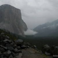 Solitude in Yosemite Valley Hike #3: Old Big Oak Flat Road