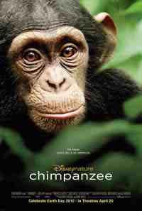Movie Poster: Chimpanzee