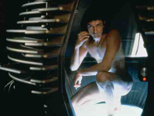 Jeff Goldblum as Seth Brundle in The Fly