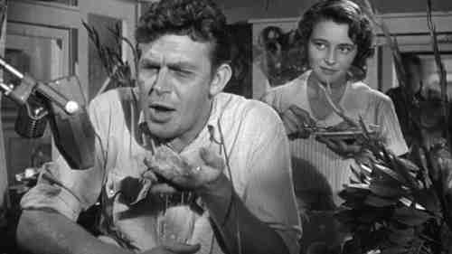 Andy Griffith on the rise as Lonesome Rhoads
