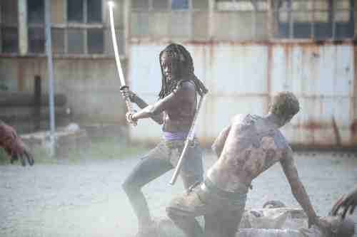 Walking Dead Season 3 Michonne