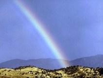 365-a-rainbow-pv