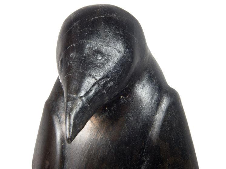 Crow Emerging