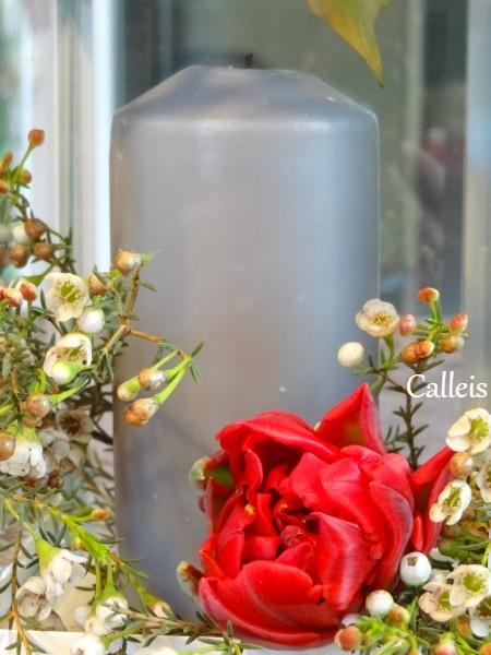 tulipe sur lanterne