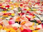 Connaissez-vous vraiment les traditions florales du mariage ?